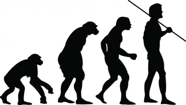 human-evolution-is-unique-650x366